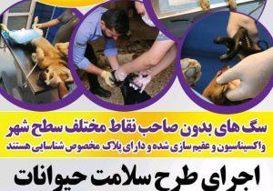 طرح سلامت حیوانات توسط شهرداری لاهیجان اجرا می شود