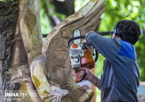 درختان خشکیده شهر لاهیجان تبدیل به مجسمه چوبی میشود