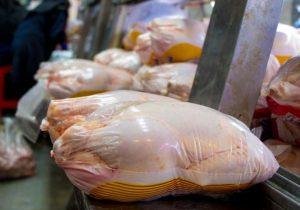 پرواز مرغ با ارز دولتی/ یارانه ۲.۵ میلیارد دلاری تولید گوشت مرغ کجاست؟