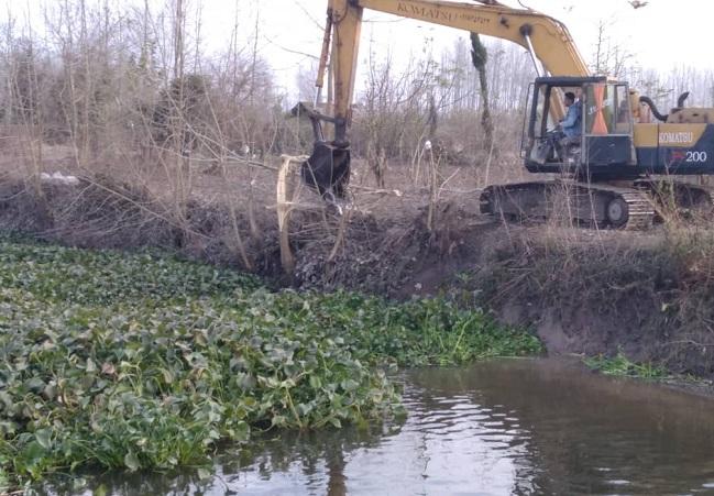 1 مدیر عامل آب منطقه ای گیلان: لایروبی سنبل آبی در رادارکومه لنگرود انجام شد