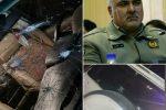 رئیس سابق محیط زیست دماوند با شلیک گلوله افراد ناشناس کشتهشد
