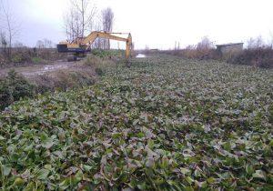 مدیر عامل آب منطقه ای گیلان: لایروبی سنبل آبی در رادارکومه لنگرود انجام شد