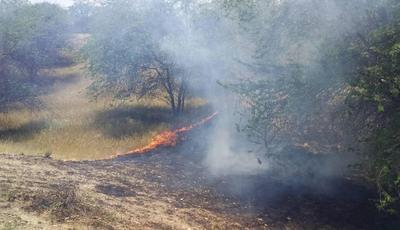 علت ناکامی آذربایجان در اطفای حریق جنگل های هیرکانی چیست؟