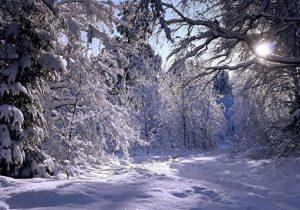 نفوذ سامانه جدید سرد و بارشی؛ برف و باران در راه گیلان