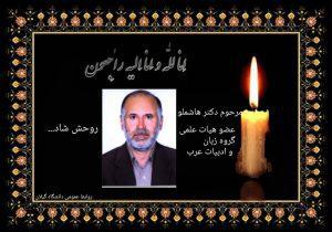 محمدرضا هاشملو عضو هیأت علمی دانشگاه گیلان درگذشت