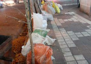 چرایی توقف سه روزه حمل زباله و تفاله توسط شهرداری لاهیجان
