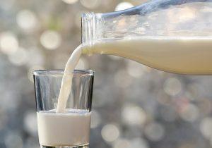 قیمت شیر خام بعد از کشمکش ها باز هم گران شد | وزیر جهاد به دنبال حمایت از دامداران؟