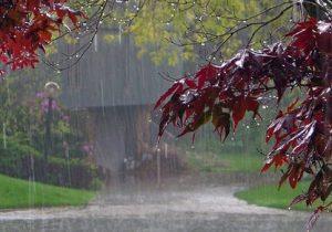 آغاز بارش ها در مناطق مختلف گیلان | هشدار نارنجی صادر شد