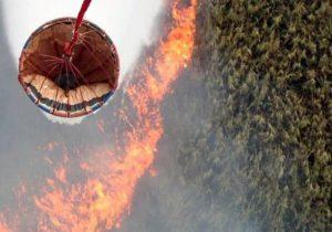 اعزام بالگرد اطفای حریق وزارت دفاع به مناطق دچار آتش سوزی در تالاب انزلی