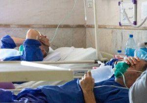 افسار گسیختگی کرونا در گیلان؛ فوت ۴۸ گیلانی دیگر