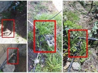 قابل توجه دارندگان انشعابات غیر مجاز آب و فاضلاب گیلان؛ انشعابات غیرمجاز قانونی می شوند | مهلت تعیین شده قابل تمدید نیست
